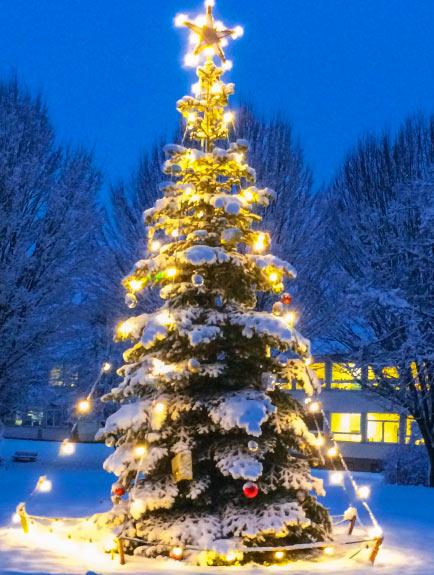 Weihnachtsbaum am Turm der Erinnerung