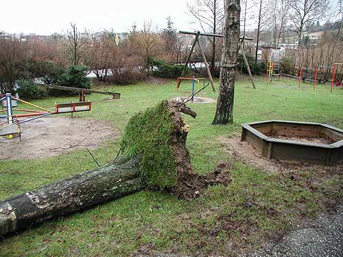 Sturm in Dahl