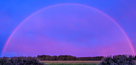 Regenbogen am 7. August um 21:05 Uhr, fotografiert mit einem Pixel 5 Smartphone. Foto: Günther Melzer. Für Großansicht draufklicken.